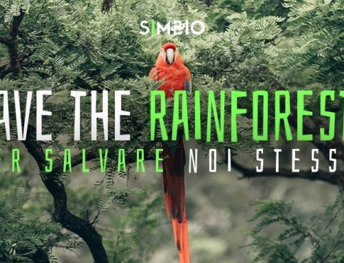 """Save the Rainforest"" per salvare noi stessi"