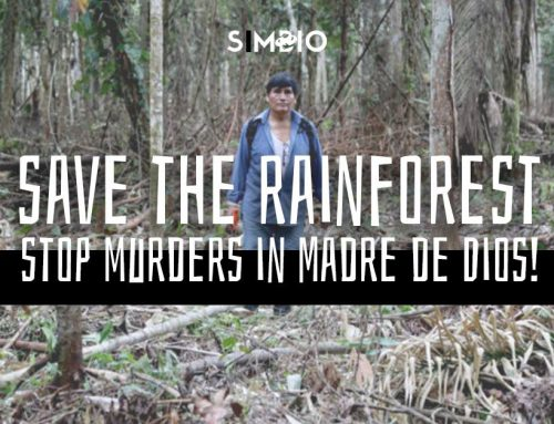 Save The Rainforest – Stop murders in Madre De Dios